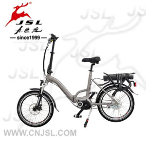 250W Central Brushless Motor 36V Lithium Battery Folding Electric Bikes pictures & photos