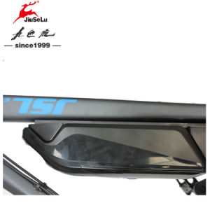 CE 350W 36V Lithium Battery Black Mountain Electric Bike (JSL035G-2) pictures & photos