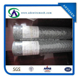 1′′ 2′′ Chicken Wire, Hexagonal Wire Netting, Chicken Wire Mesh pictures & photos
