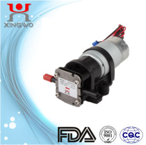 DC Electric Mini Gear Pump (CP001A1)