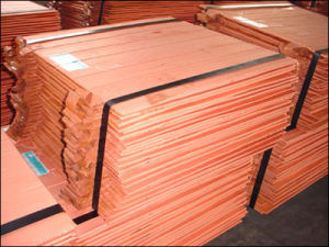 Hot Sale High Quanlity Cathode Copper (TX-003-02)