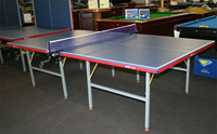 Foldable Table Tennis Table (TE-03) pictures & photos