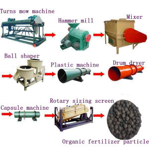 Hot Sale Complete Production Line for Organic Fertilizer Particles with Best Price