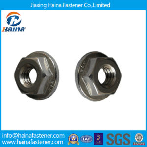 Stainless Steel 316 Hexagon Flange Nuts M20 pictures & photos