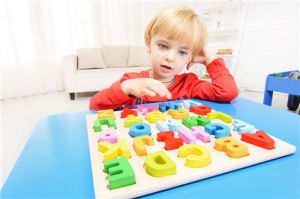 Wooden Toy Building Blocks, Children Wooden Building Block