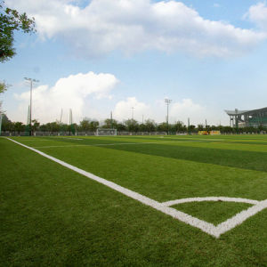 Multi-Color Synthetic Soccer Artificial Grass (Wuxi manufacturer) pictures & photos
