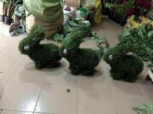 2016 Customized Artificial Plant Rabbit Topiary pictures & photos
