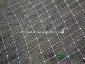 Supplier of Active Side Slope Protecting Mesh pictures & photos