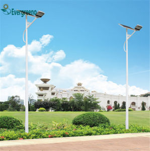 Professional Factory Supply China Factory Separated Solar LED Street Light Wholesale pictures & photos