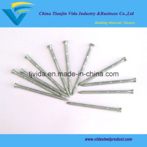 Concrete Nails with Bamboo Shank pictures & photos