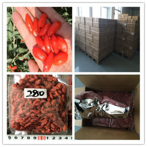 280grains/50g Organic Goji Berry
