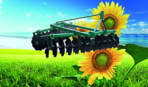 Agriculture Machinery Heavy-Duty off-Set Disc Harrow pictures & photos
