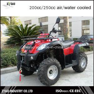 200cc Big ATV Farm UTV with Big Tyre for Sale