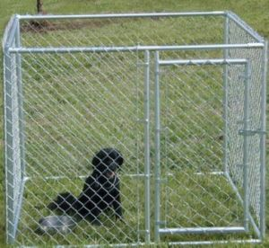 Chain Link Fence Cage, Dog Kennel Wholesale pictures & photos