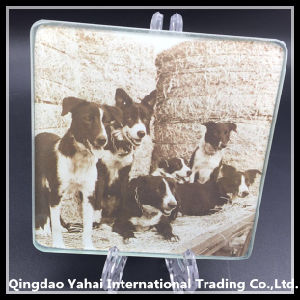 5mm Tempered Glass Coaster with Dog Pattern pictures & photos