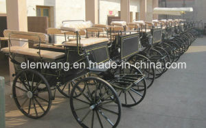Marathon Horse Carts with Enclosed Hood pictures & photos