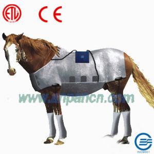 Far Infrared Heated Therapy Horse Sauna