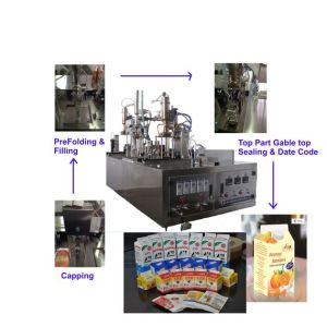 Small Manual Type Juice/Milk Filling Machine (BW-500) pictures & photos