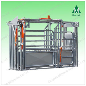 Galvanized Powder Coated Small Cattle Weighing Scale pictures & photos