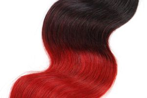 Ombre Color Peruvian Human Hair Body Wave 20inches pictures & photos