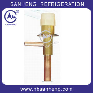 Automatic Expansion Valve with Good Price pictures & photos
