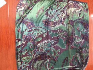Burnout Printed Woven Fabric/Textile (RTBP002) pictures & photos