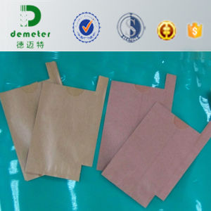 Popular Wholesale Thailand Fruit Growing Protection Kraft Paper Bag Manufacturer in Malaysia pictures & photos