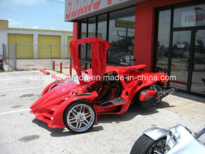 Great News! Trike Motorcycle / Three Wheel Motorcycle / Tricycle (3S T-REX)