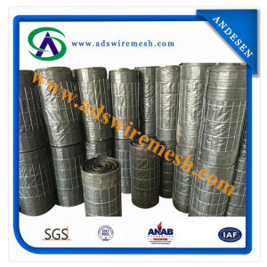 Silt Fence With Wire Mesh | China 85gsm Geofabric Geotextile Fabric With 14 Ga Wire Mesh 2 X4