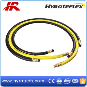 Rubber Air Hose with Fitting/Rubber Air Hose/ Air Hose pictures & photos