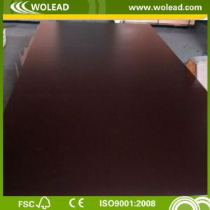 2 Times Hot Pressed Plywood for Building and Concrete (w15302)