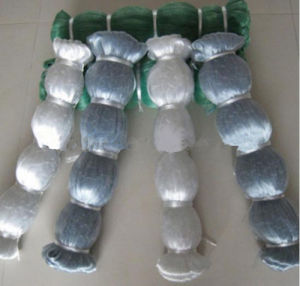 High Intensity and Quqlity Nylon Monofilament Fishing Net pictures & photos