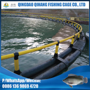 China Factory Wholesale HDPE Floating Fish Farming Cage
