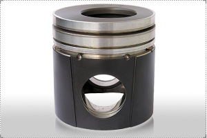 Top Anodic Oxidation Rimming Graphite Piston pictures & photos