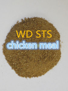 Chicken Meal for Poultry Feed Additive
