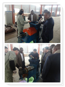 Automatic Palm Oil Screw Press Machine (RBPO)