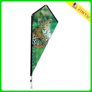 Digital Printing Coloful Canvas Promotion Flag