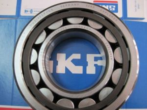 Cylindrical Roller Bearing SKF Nu215ecp Single Row Roller Bearing pictures & photos