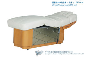 Ultra Soft Luxury Beauty Bed, Massage Table, Massag Bed (08D04-4)