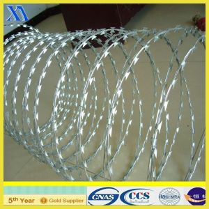 Cbt-65 Concertina Razor Wire Manufacturer (XA-RW011) pictures & photos