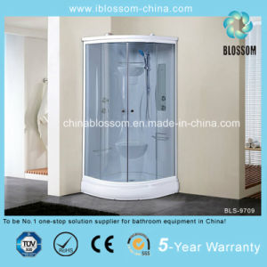 Tempered Grey Glass Complete Shower Cabin Shower Room (BLS-9709) pictures & photos