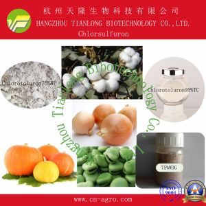 Chlorsulfuron (95%TC, 25%WP, 50%WP, 75%WP, 80%WP, 75%WDG) pictures & photos