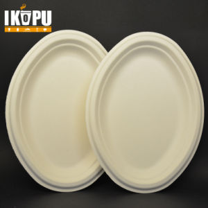 Ecofriendly Paper Pulp Sugarcane Bagasse Oval Plates & China Ecofriendly Paper Pulp Sugarcane Bagasse Oval Plates - China ...