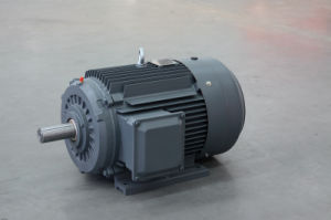 Yd Series Pole-Changing Induction Motor pictures & photos