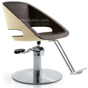 Comfortable High Quality Beauty Salon Furniture Salon Chair (AL315)