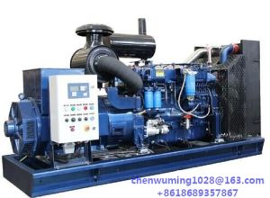 Weichai Diesel Engine Wd12D225e10 High Qunlity with Steyr Technology pictures & photos