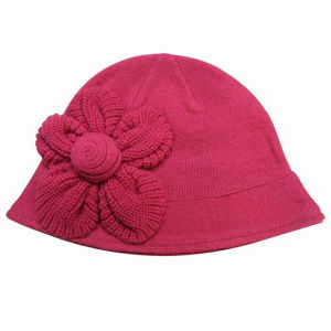 Lady Fashion Wool Acrylic Knitted Winter Warm Beret Hat (YKY3111) pictures & photos
