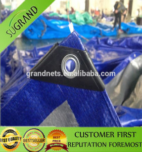 Blue Virgin PE Waterproof Tarpaulin Cover pictures & photos