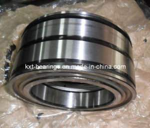 Full Complement Roller Bearing SL045026PP SL045024PP SL045022PP SL045020PP pictures & photos