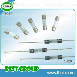 Glass Tube Fuse (FBGTF1019, 1020) pictures & photos